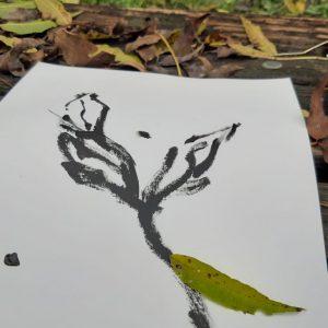 o-prirodi-u-prirodi-6